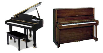Piano Tuning and Reasonable Prices